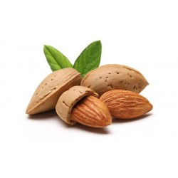 Almond - Short Fill