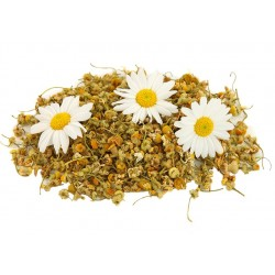 Chamomile - Short Fill