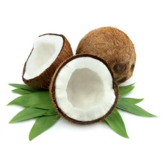 Coconut - Short Fill