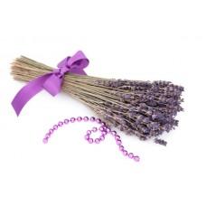 Lilac - Short Fill