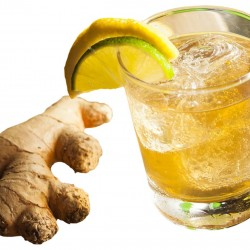 Ginger Beer - Short Fill