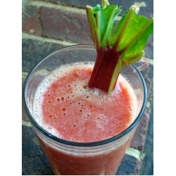 Rhubarb Juice - Concentrate - Clearance Item
