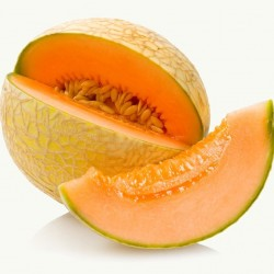 Cantaloupe Melon - Short Fill