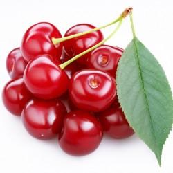 Cherry - Short Fill