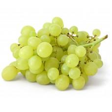 Grape - Short Fill