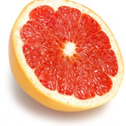 Grapefruit - Short Fill