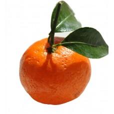 Mandarin (0mg)
