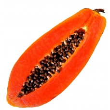 Papaya - Short Fill