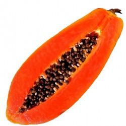 Papaya - Short Fill