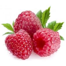 Raspberry - Short Fill