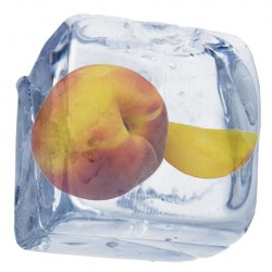 Nectarine Menthol - Concentrate