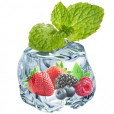 Berry Menthol - Short Fill