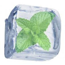Ice Mint - Short Fill