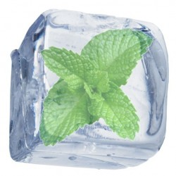 Ice Mint (0mg)