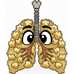 Popcorn Lung - Short Fill