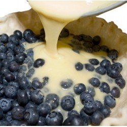 Blueberry Custard (0mg)