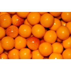 Peach Bubblegum (0mg)